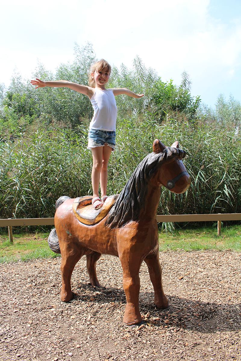 Op het paard staan