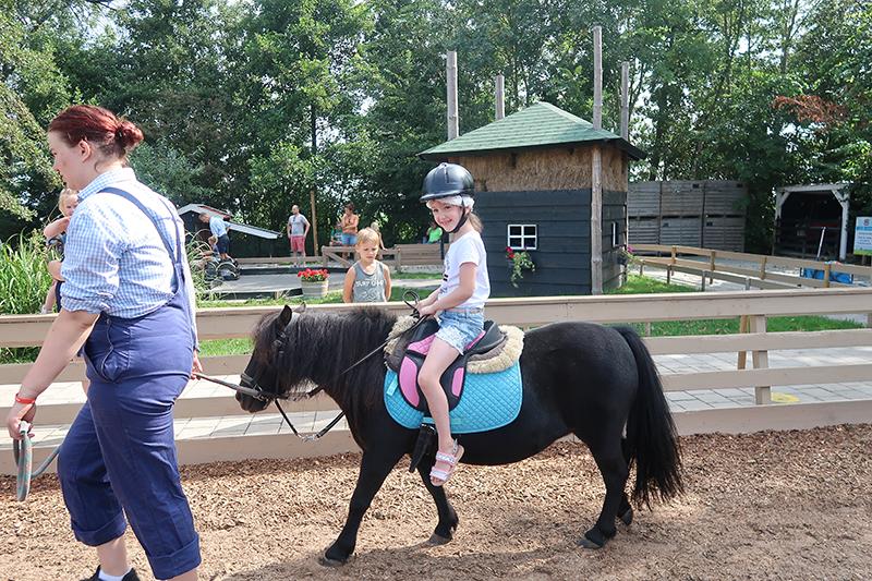 Paardje rijden Molenwaard