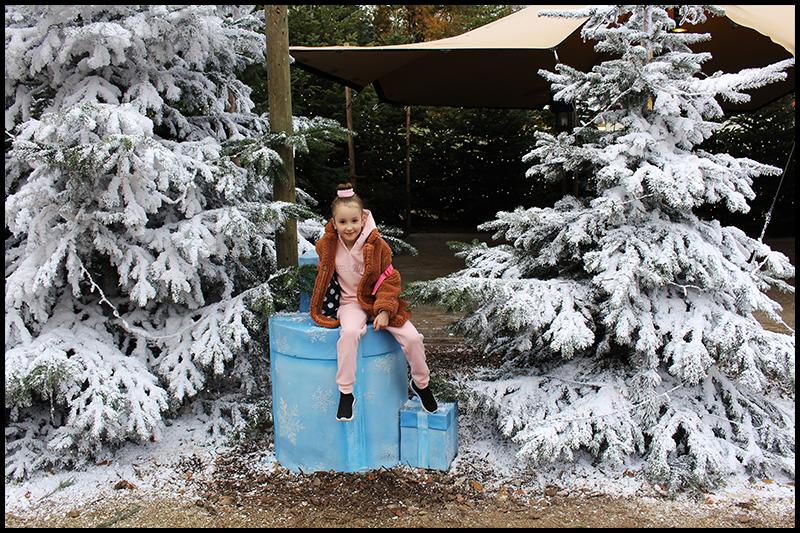 Bij de kerstbomen