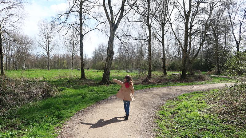 Wandelen in het Loetbos